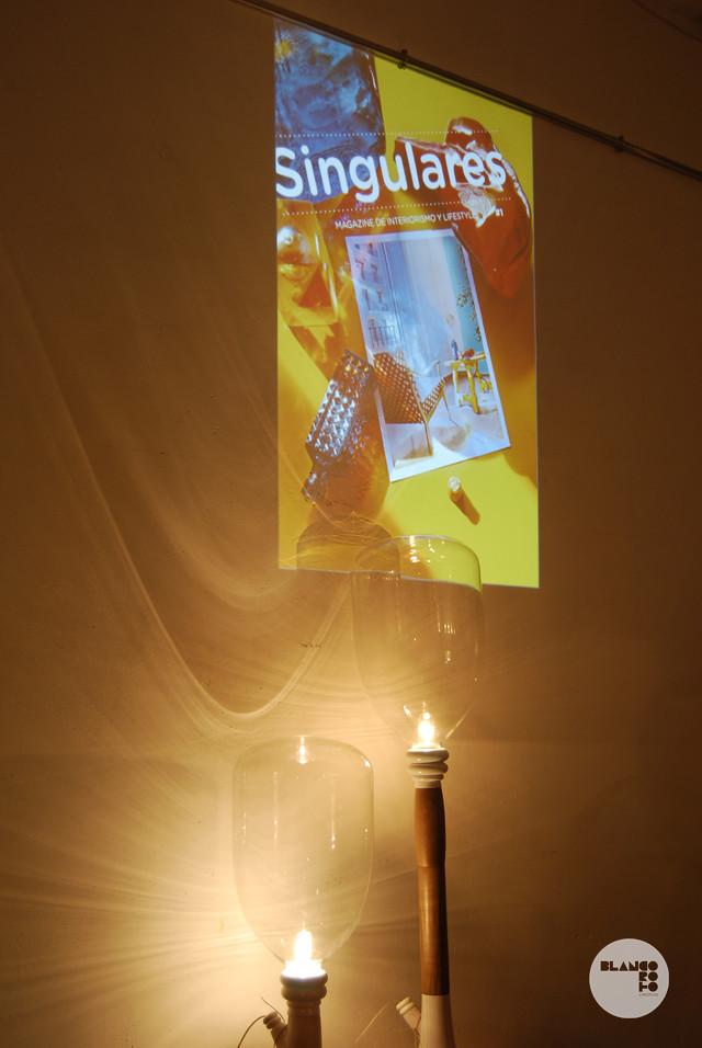 Singulares Magazine 05
