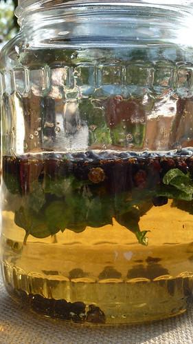 Juniper Vinegar - Aceto al ginepro