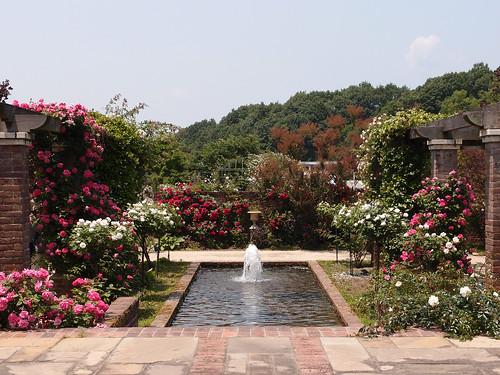 Friendship garden in Flower festival commemorative park. フレンドシップガーデン 花フェスタ記念公園