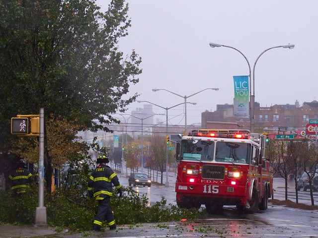 Tree Down on 11th St