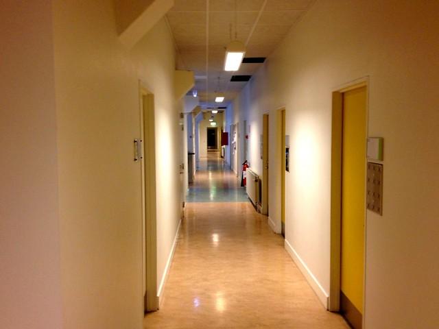 Corridor (Endless)