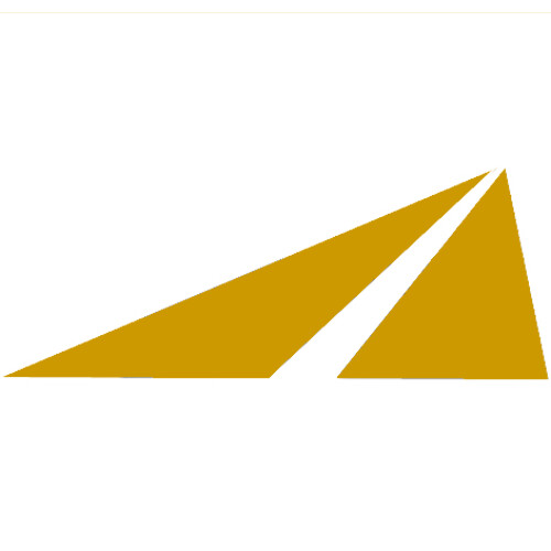 Logo_Banicki-Construction_Tempe-AZ-US-4