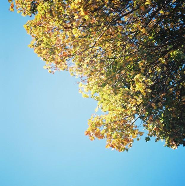 I love blue sky !