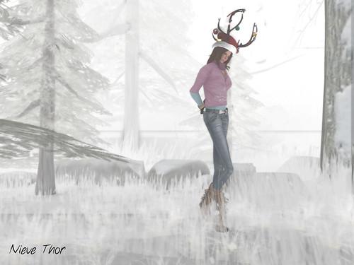 Walks iin the woods