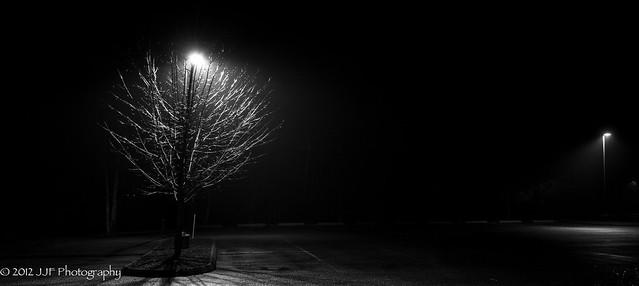 2012_Dec_10_Tree and Light_006