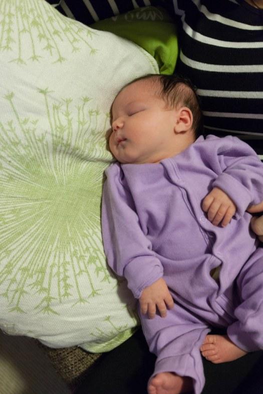Couch Baby Potato