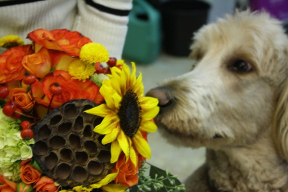 Doak stops to smell the flowers