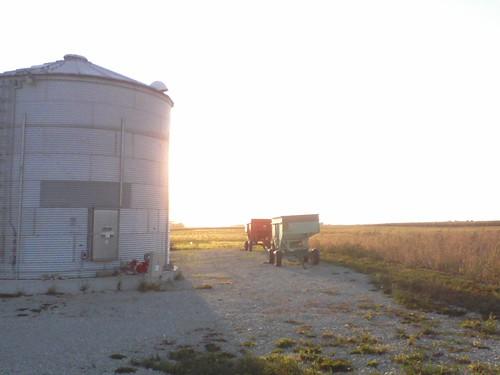 grain carts at sunset