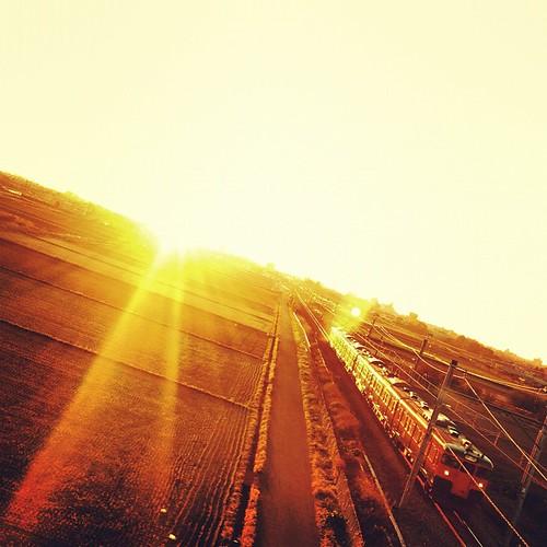 朝陽の中からやって来た! 夕べの天気予報で今日は天気が良いと言っていたので早起きして朝陽を拝み(撮りに)行って来ました。 そこに偶然やって来た電車と一緒におはようの一枚! #アサヒ#朝陽#朝日#電車