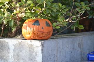 Lone Pumpkin