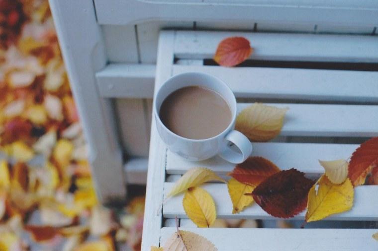 enjoying autumn.