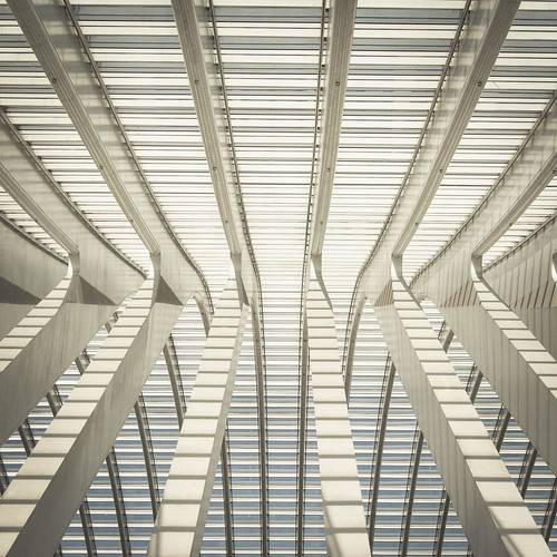 Trapped in the Structure's Web (Gare de Liège-Guillemins, Belgique) - Photo : Gilderic