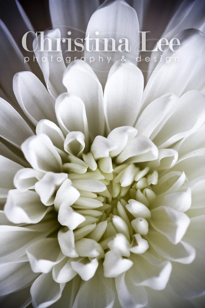 whitemum1