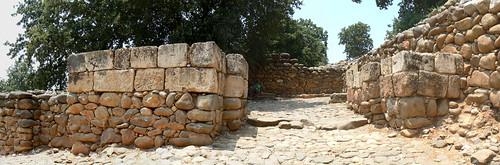השער הישראלי דן