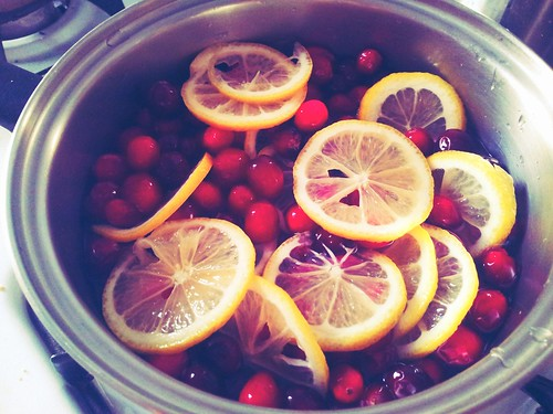 Cranberries and Lemon Slices
