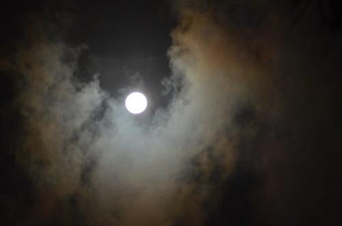 moon gazing2