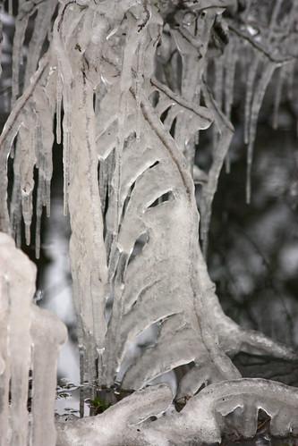 ice imitating life