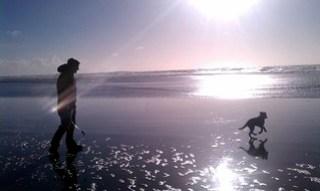 26 - ocean beach