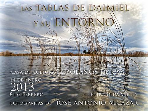 Cartel de la Exposición en Bolaños de Cva. (2013) by dedaimiel