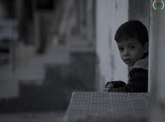 Gaza, November 2012