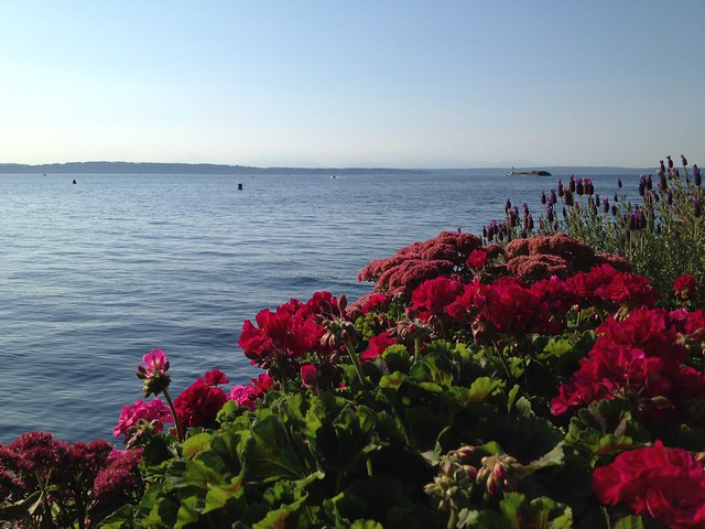Puget Sound view, Anthony's HomePort