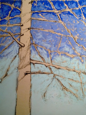 20121231_step2_pine