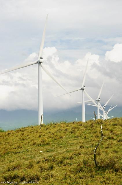 Bangui Windmills NorthWind Bangui Bay Project Ilocos Norte