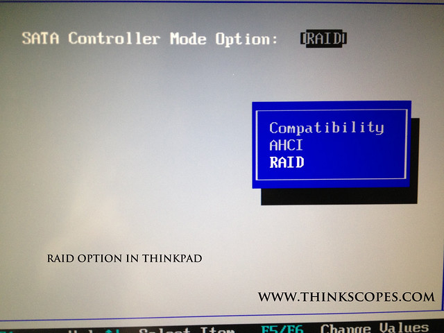 ThinkPad with RAID option