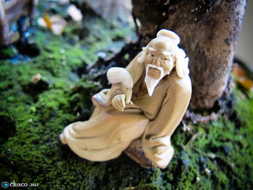 el viejo que medita en mi bonsai by Christian Ubilla