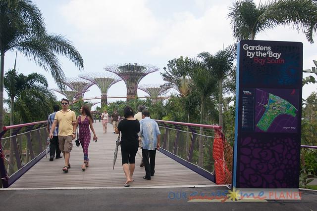 Your Singapore-381.jpg