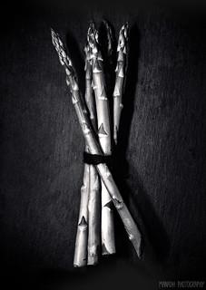 Asparagus // 27 03 13