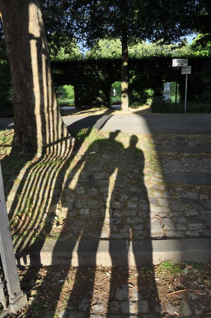 Shadow_4