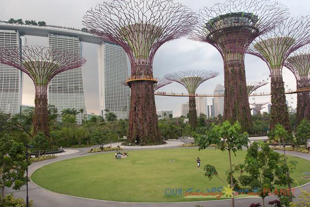 Your Singapore-502.jpg