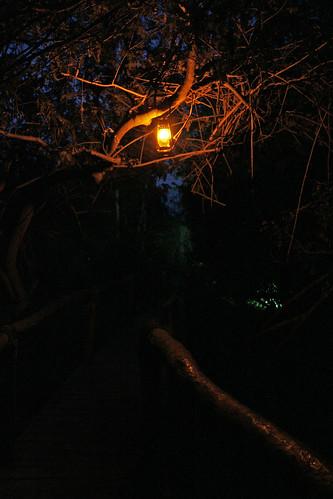 lamp at Ruzizi Tented Camp, Akagera