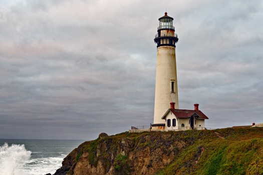 Standing Tall - Pigeon Point - 2013