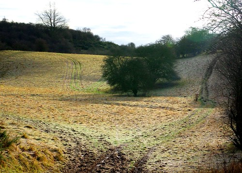 20121202-09_Cotswold Landscape - Looking towards Bourton Downs by gary.hadden
