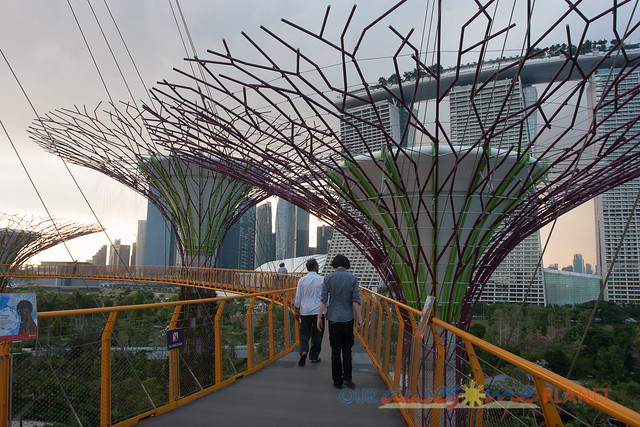 Your Singapore-42.jpg