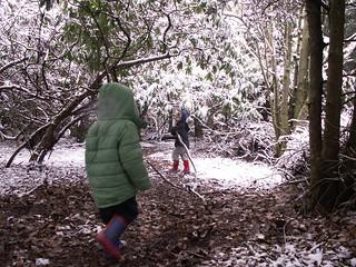 Shuttlewood-Clarke - Yew Trail