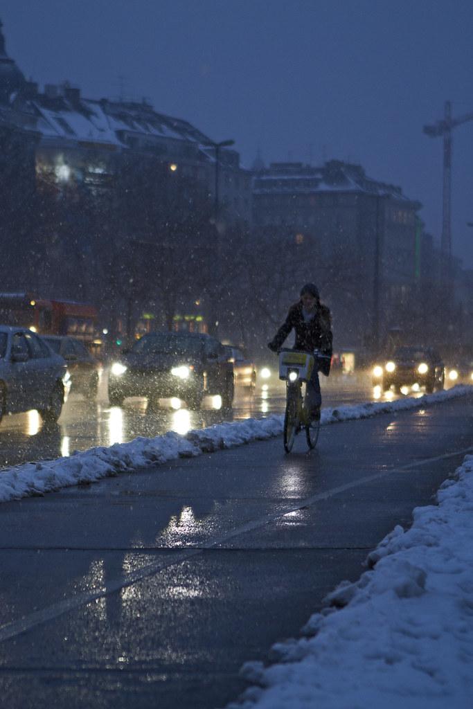 viennese viking biking