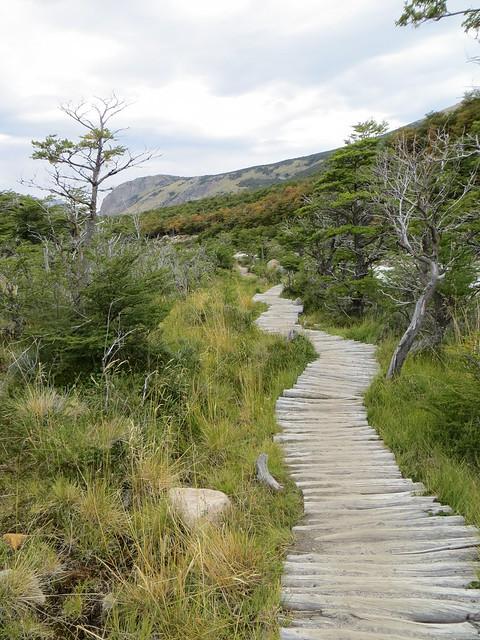 trail to laguna torre