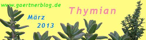 Garten-Koch-Event März 2013: Thymian [31.03.2013]