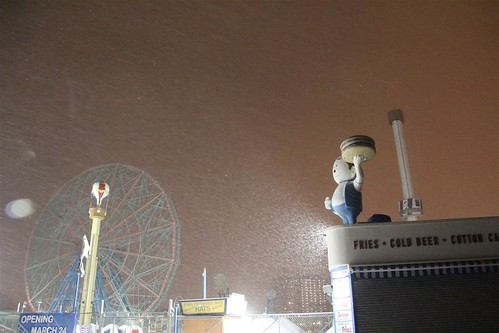 Coney Island: Winter's First Snow