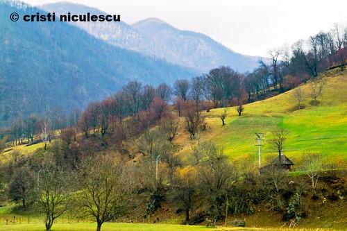 Mountain Lap by cristiniculescu