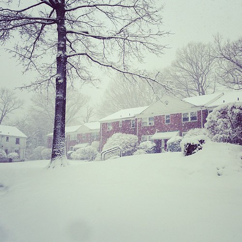Snow Day (3/8/2013)