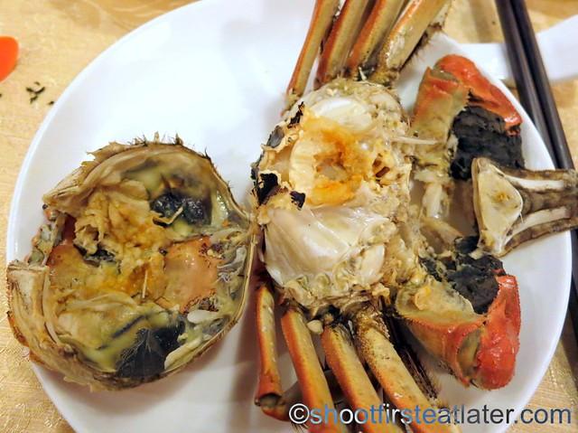 hairy crab-001