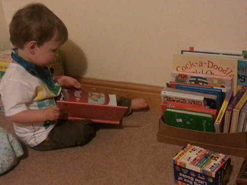 N's book box