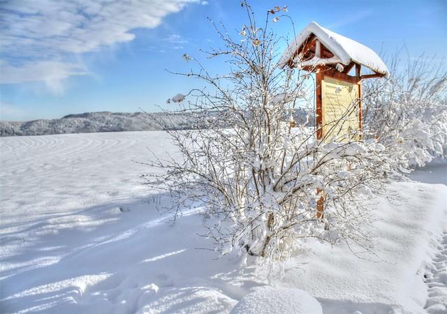Winter_I