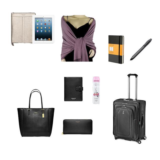 Airport Travel bag