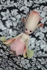 43/365 Flower Fairie