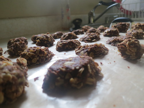 Nutella and Bailey's no bake cookies